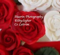 Joseph Sheerin, Kiltyclogher, Co Leitrim, Phone: (071) 9854376 Mobile: (087) 4152610 Email: sheerinphotography@gmail.com